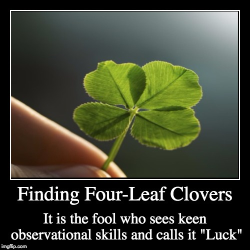 "Four-Leaf Clovers | Finding Four-Leaf Clovers | It is the fool who sees keen observational skills and calls it ""Luck"" 