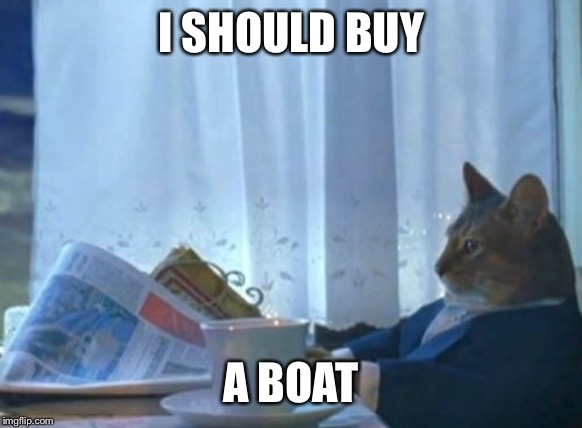 I SHOULD BUY A BOAT | image tagged in memes,i should buy a boat cat | made w/ Imgflip meme maker