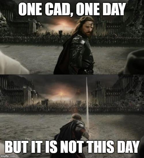 Aragorn in battle |  ONE CAD, ONE DAY; BUT IT IS NOT THIS DAY | image tagged in aragorn in battle,aragornnotthisday,aragorn,computers | made w/ Imgflip meme maker
