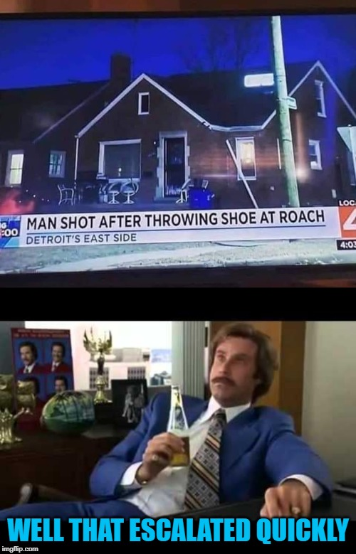 You can't make this stuff up... | WELL THAT ESCALATED QUICKLY | image tagged in memes,well that escalated quickly,strange news,funny,armed roaches,game changer | made w/ Imgflip meme maker