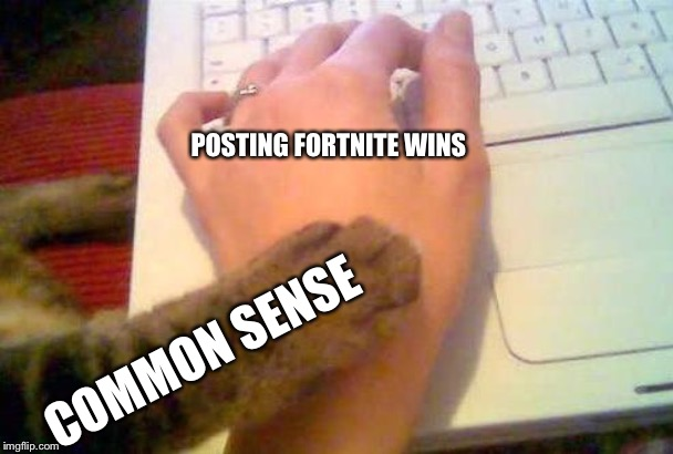 Stop it, get some help. | POSTING FORTNITE WINS COMMON SENSE | image tagged in stop posting cat,fortnite,posts,memes,video games,common sense | made w/ Imgflip meme maker