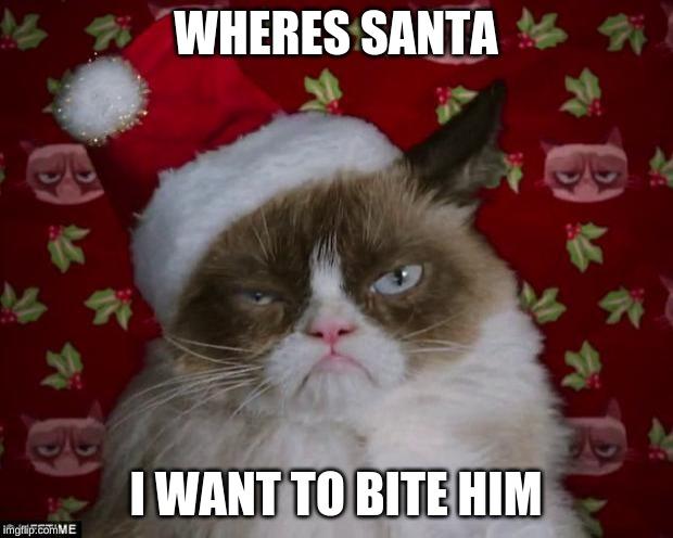 Christmas Memes Cats.Cats Grumpy Cat Christmas Memes Gifs Imgflip