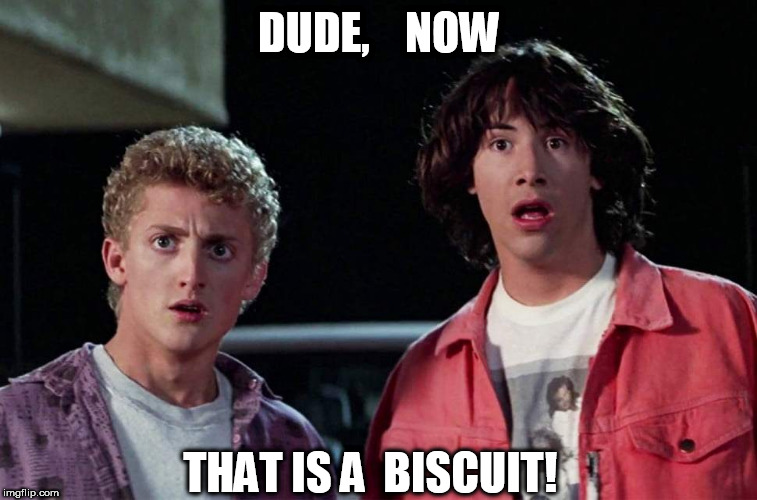DUDE,    NOW THAT IS A  BISCUIT! | made w/ Imgflip meme maker