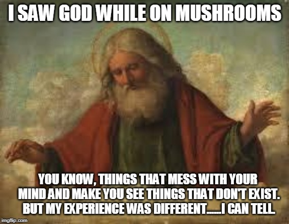 god | I SAW GOD WHILE ON MUSHROOMS YOU KNOW, THINGS THAT MESS WITH YOUR MIND AND MAKE YOU SEE THINGS THAT DON'T EXIST. BUT MY EXPERIENCE WAS DIFFE | image tagged in god | made w/ Imgflip meme maker