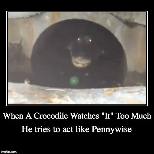 "Pennywise the Crocodile | When A Crocodile Watches ""It"" Too Much 