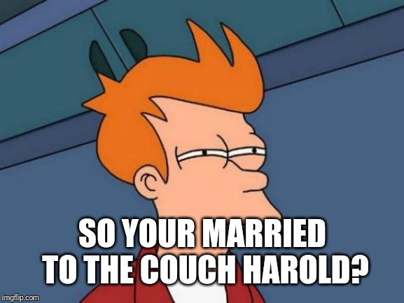 Futurama Fry Meme | SO YOUR MARRIED TO THE COUCH HAROLD? | image tagged in memes,futurama fry | made w/ Imgflip meme maker