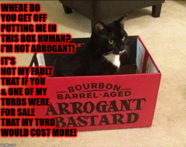 ARROGANT | WHERE DO YOU GET OFF PUTTING ME IN THIS BOX HUMAN? I'M NOT ARROGANT! IT'S NOT MY FAULT THAT IF YOU & ONE OF MY TURDS WERE FOR SALE THAT MY T | image tagged in arrogant | made w/ Imgflip meme maker