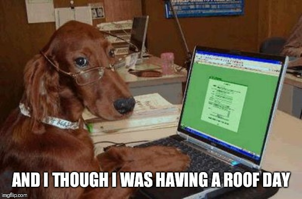 Dog with Glasses on Computer | AND I THOUGH I WAS HAVING A ROOF DAY | image tagged in dog with glasses on computer | made w/ Imgflip meme maker
