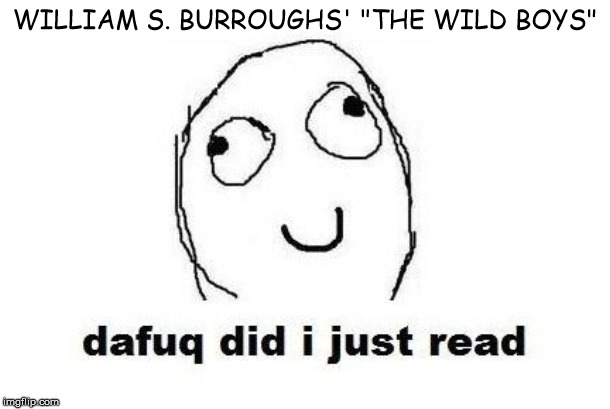 "Dafuq Did I Just Read |  WILLIAM S. BURROUGHS' ""THE WILD BOYS"" 