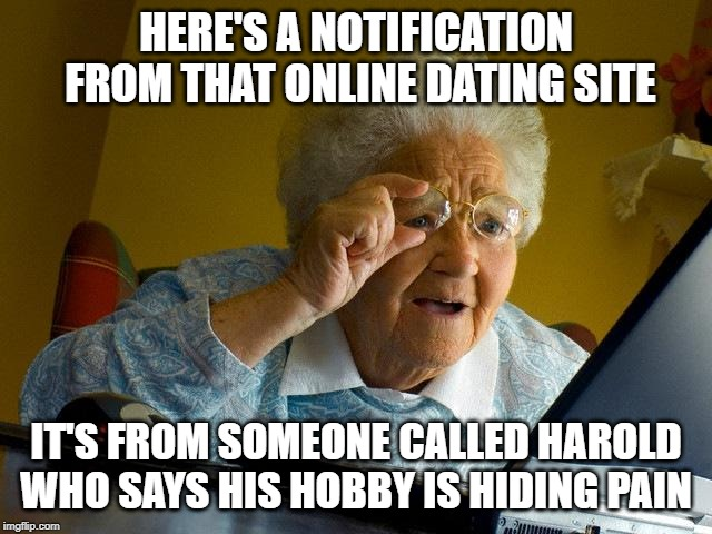 Grandma Finds The Internet |  HERE'S A NOTIFICATION FROM THAT ONLINE DATING SITE; IT'S FROM SOMEONE CALLED HAROLD WHO SAYS HIS HOBBY IS HIDING PAIN | image tagged in memes,grandma finds the internet | made w/ Imgflip meme maker