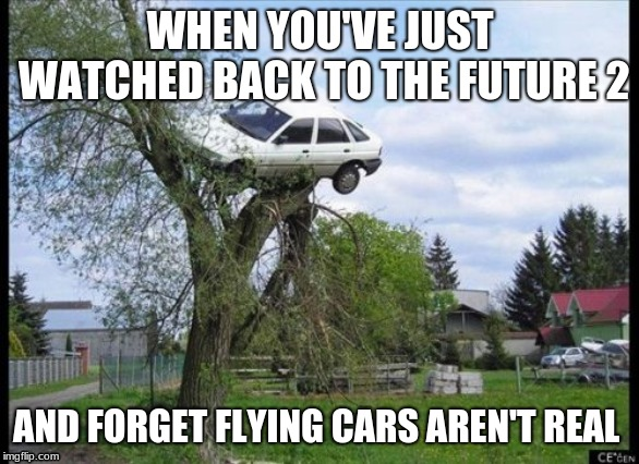 we're sending you back to the future | WHEN YOU'VE JUST WATCHED BACK TO THE FUTURE 2 AND FORGET FLYING CARS AREN'T REAL | image tagged in memes,secure parking,back to the future 2015,back to the future | made w/ Imgflip meme maker