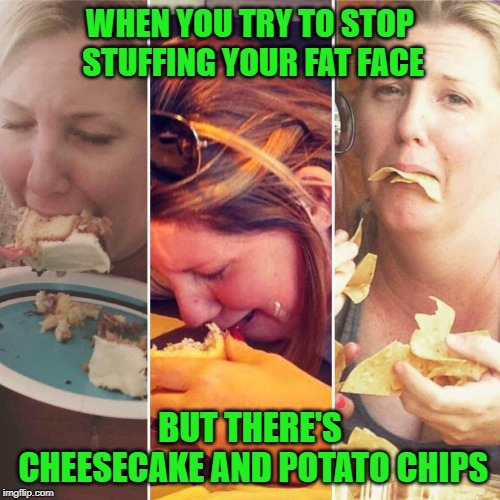 Or chocolate Twinkies. |  WHEN YOU TRY TO STOP STUFFING YOUR FAT FACE; BUT THERE'S CHEESECAKE AND POTATO CHIPS | image tagged in eating and crying,nixieknox,memes | made w/ Imgflip meme maker