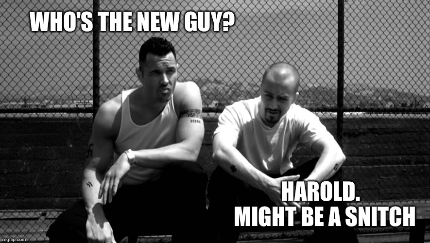 WHO'S THE NEW GUY? HAROLD.  MIGHT BE A SNITCH | made w/ Imgflip meme maker