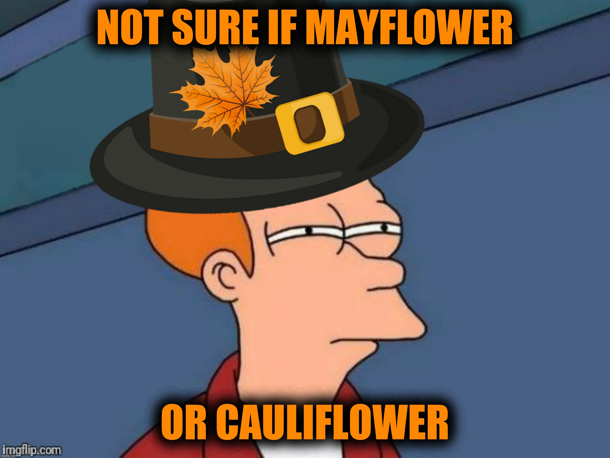 Bad Photoshop Sunday presents:  Somehow Mayflower just isn't colonial enough | NOT SURE IF MAYFLOWER OR CAULIFLOWER | image tagged in bad photoshop sunday,futurama fry,colonialism,pilgrims,mayflower,cauliflower | made w/ Imgflip meme maker