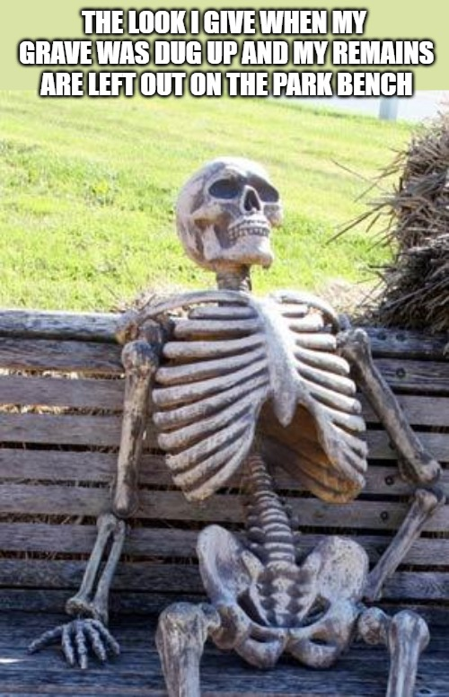Waiting Skeleton | THE LOOK I GIVE WHEN MY GRAVE WAS DUG UP AND MY REMAINS ARE LEFT OUT ON THE PARK BENCH | image tagged in memes,waiting skeleton | made w/ Imgflip meme maker