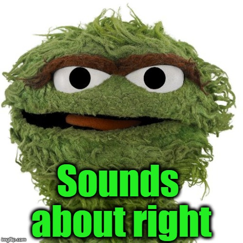 Oscar The Grouch | Sounds about right | image tagged in oscar the grouch | made w/ Imgflip meme maker