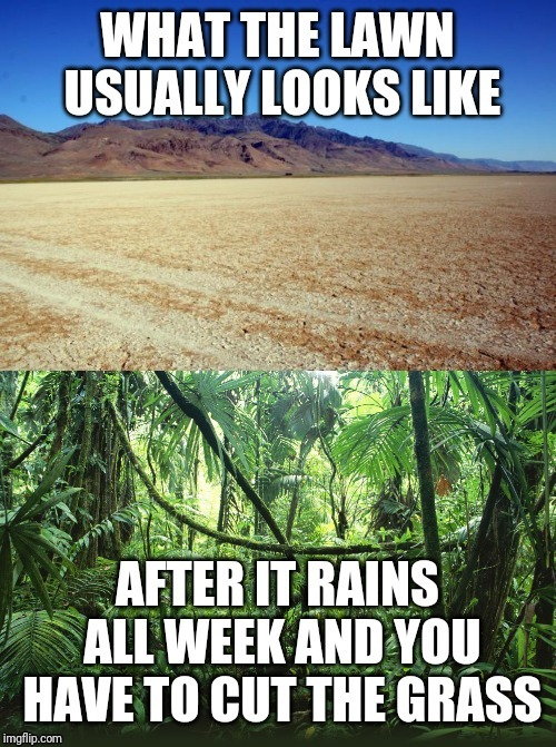 Cutting grass reality | image tagged in lawnmower,lawn,rain,desert,expectation vs reality | made w/ Imgflip meme maker