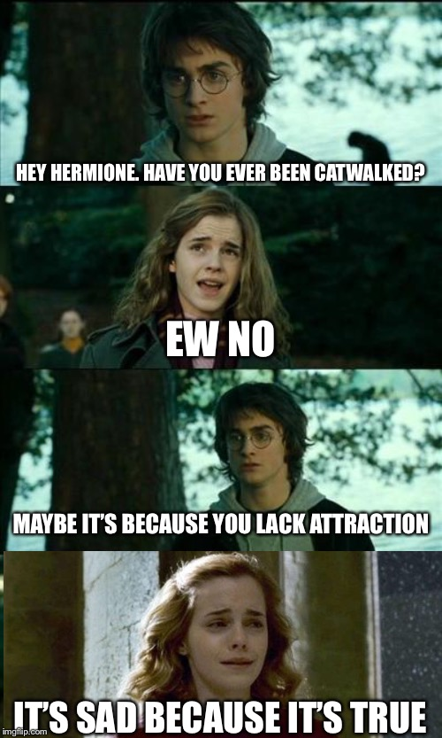 Ron in the background: Toasty! | HEY HERMIONE. HAVE YOU EVER BEEN CATWALKED? EW NO MAYBE IT'S BECAUSE YOU LACK ATTRACTION IT'S SAD BECAUSE IT'S TRUE | image tagged in memes,horny harry,roasted,burned,hermione granger,harry potter and hermione | made w/ Imgflip meme maker