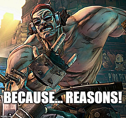 Mr. Torgue: Because Reasons |  BECAUSE... REASONS! | image tagged in borderlands,torgue,because | made w/ Imgflip meme maker