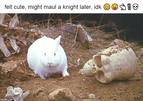 Instahoe of Caerbannog | felt cute, might maul a knight later, idk ????? | image tagged in holy grail,monty python,beast of caerbannog,bunny,rabbit,monty python and the holy grail | made w/ Imgflip meme maker