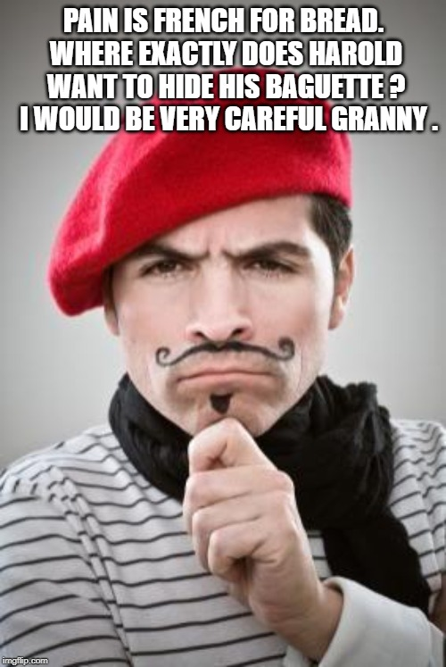 Frenchman | PAIN IS FRENCH FOR BREAD. WHERE EXACTLY DOES HAROLD WANT TO HIDE HIS BAGUETTE ?  I WOULD BE VERY CAREFUL GRANNY . | image tagged in frenchman | made w/ Imgflip meme maker