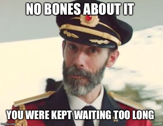 Captain Obvious | NO BONES ABOUT IT YOU WERE KEPT WAITING TOO LONG | image tagged in captain obvious | made w/ Imgflip meme maker
