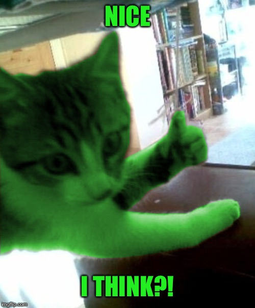 thumbs up RayCat | NICE I THINK?! | image tagged in thumbs up raycat | made w/ Imgflip meme maker