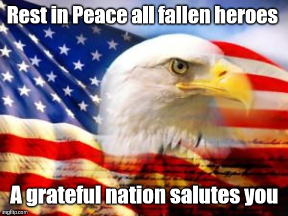 Memorial Day | Rest in Peace all fallen heroes A grateful nation salutes you | image tagged in american flag,memorial day,rip,heroes,serious,america | made w/ Imgflip meme maker