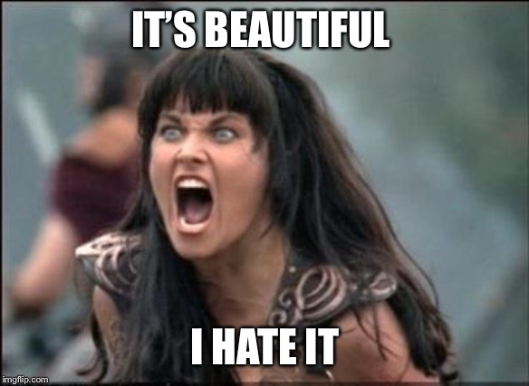 Angry Xena | IT'S BEAUTIFUL I HATE IT | image tagged in angry xena | made w/ Imgflip meme maker