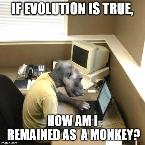 Monkey Business |  IF EVOLUTION IS TRUE, HOW AM I REMAINED AS  A MONKEY? | image tagged in memes,monkey business | made w/ Imgflip meme maker