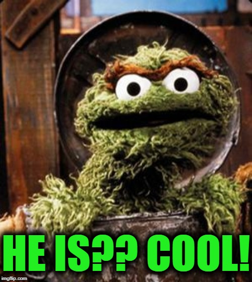 Oscar the Grouch | HE IS?? COOL! | image tagged in oscar the grouch | made w/ Imgflip meme maker