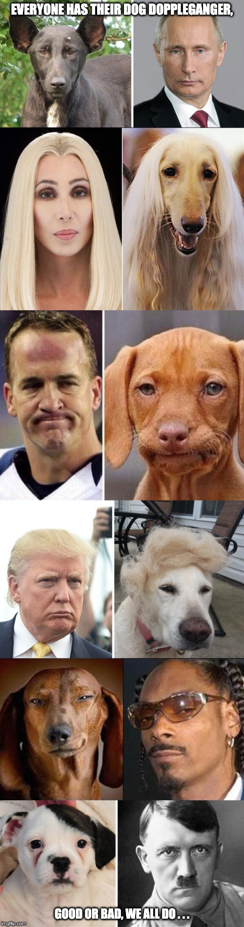 DOGpplegangers |  EVERYONE HAS THEIR DOG DOPPLEGANGER, GOOD OR BAD, WE ALL DO . . . | image tagged in dogs,snoop dogg,vladimir putin,donald trump,disappointed dog,adolf | made w/ Imgflip meme maker