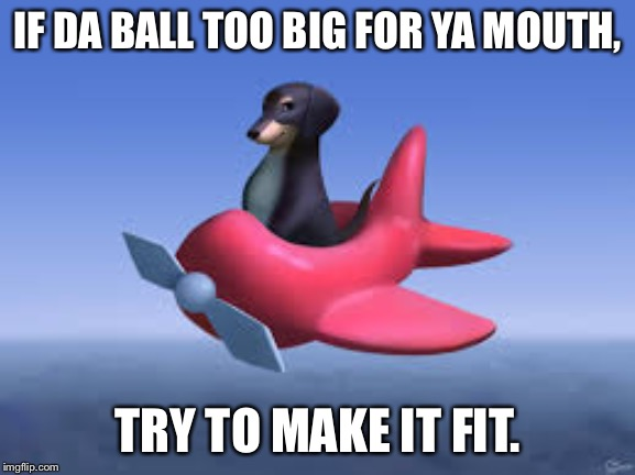 Dog of Wisdom |  IF DA BALL TOO BIG FOR YA MOUTH, TRY TO MAKE IT FIT. | image tagged in dog of wisdom | made w/ Imgflip meme maker