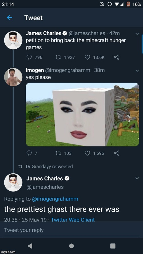 image tagged in james charles,big gae,gay | made w/ Imgflip meme maker