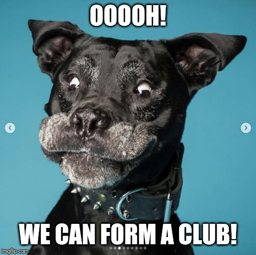 Indubitably Dog | OOOOH! WE CAN FORM A CLUB! | image tagged in indubitably dog | made w/ Imgflip meme maker