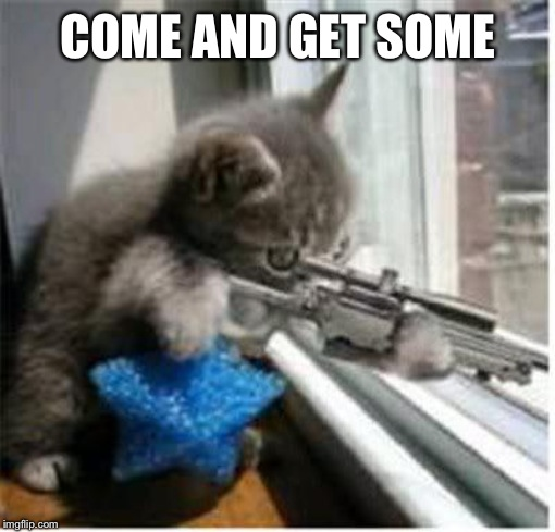 cats with guns | COME AND GET SOME | image tagged in cats with guns | made w/ Imgflip meme maker