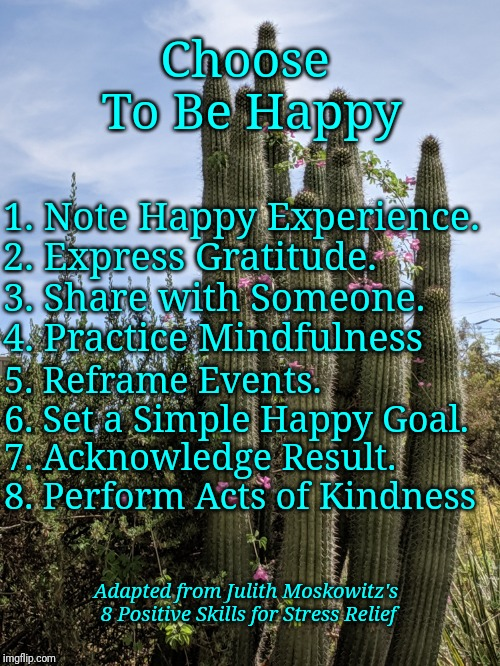 Adaptation of Moskowitz's 8 Stress reduction Skills | 1. Note Happy Experience.    2. Express Gratitude.      3. Share with Someone.     4. Practice Mindfulness 5. Reframe Events.    6. Set a Si | image tagged in positive thinking | made w/ Imgflip meme maker