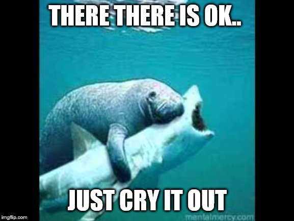 manatees - natures therapists | THERE THERE IS OK.. JUST CRY IT OUT | image tagged in manatee hugs sharkhark,cute animals,compassion | made w/ Imgflip meme maker