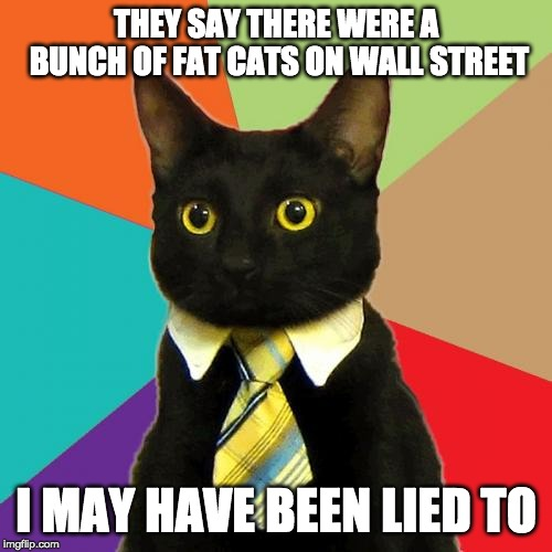 Wall Street Cat | THEY SAY THERE WERE A BUNCH OF FAT CATS ON WALL STREET I MAY HAVE BEEN LIED TO | image tagged in memes,business cat | made w/ Imgflip meme maker