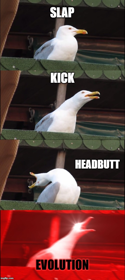 Inhaling Seagull Meme | SLAP KICK HEADBUTT EVOLUTION | image tagged in memes,inhaling seagull | made w/ Imgflip meme maker