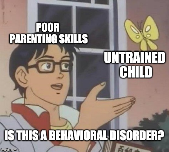 Pumping your kid full of drugs isn't going to fix your own crap | POOR PARENTING SKILLS UNTRAINED CHILD IS THIS A BEHAVIORAL DISORDER? | image tagged in memes,is this a pigeon,bad parenting,parents,kids,behavior | made w/ Imgflip meme maker
