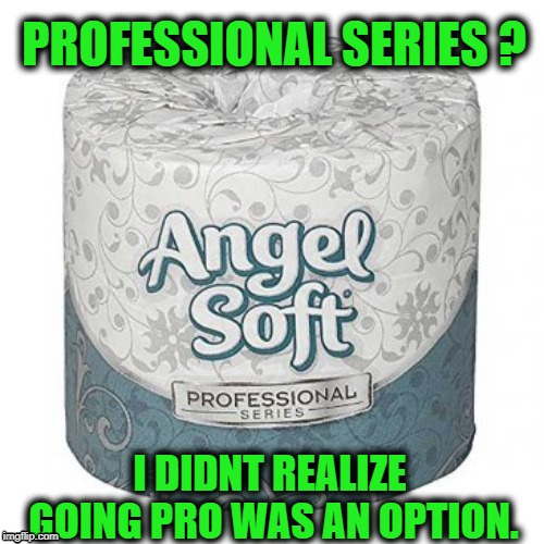 Angel Soft Pro | PROFESSIONAL SERIES ? I DIDNT REALIZE GOING PRO WAS AN OPTION. | image tagged in funny,toilet paper,professional,joke,pro | made w/ Imgflip meme maker
