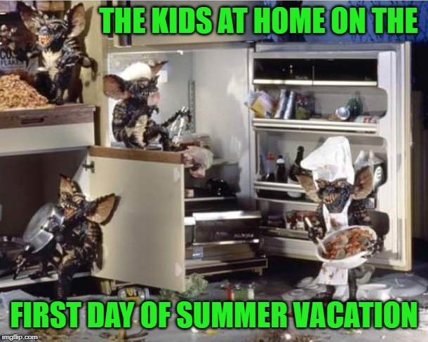 It's times like these that I'm glad I don't have kids!!! | THE KIDS AT HOME ON THE FIRST DAY OF SUMMER VACATION | image tagged in gremlins,memes,summer vacation,funny,kids,school's out for the summer | made w/ Imgflip meme maker