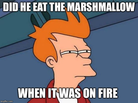 Futurama Fry Meme | DID HE EAT THE MARSHMALLOW WHEN IT WAS ON FIRE | image tagged in memes,futurama fry | made w/ Imgflip meme maker