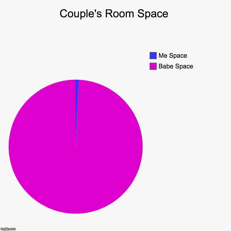 Couple's Room Space | Babe Space, Me Space | image tagged in charts,pie charts | made w/ Imgflip chart maker