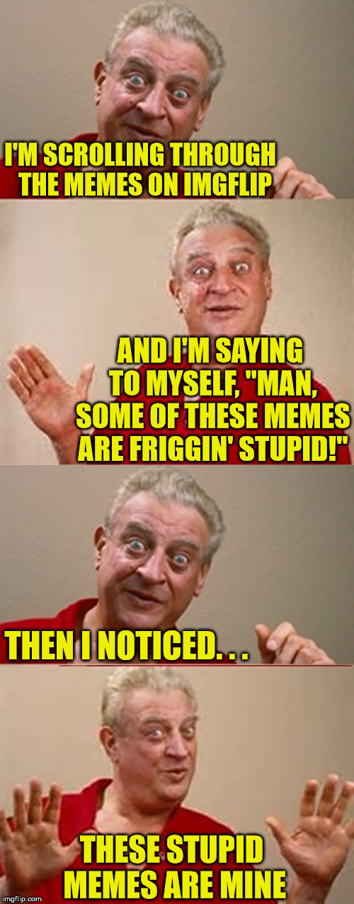 "Stupid Memes | I'M SCROLLING THROUGH  THE MEMES ON IMGFLIP AND I'M SAYING TO MYSELF, ""MAN, SOME OF THESE MEMES ARE FRIGGIN' STUPID!"" THEN I NOTICED. . . TH 