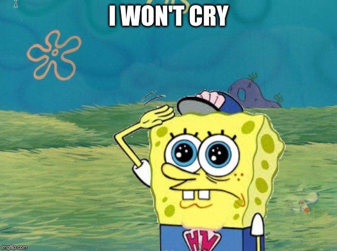 Spongebob salute | I WON'T CRY | image tagged in spongebob salute | made w/ Imgflip meme maker