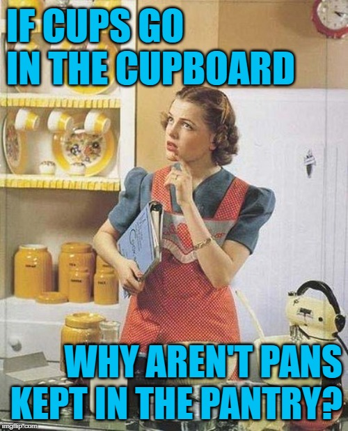 PhilosoHousewife Kitchen Quandry | IF CUPS GO IN THE CUPBOARD WHY AREN'T PANS KEPT IN THE PANTRY? | image tagged in vintage kitchen query,philosoraptor,mashup,housewife,funny memes,questions | made w/ Imgflip meme maker