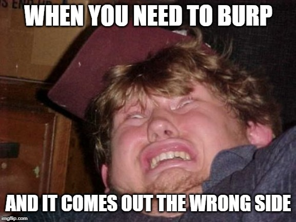 WTF |  WHEN YOU NEED TO BURP; AND IT COMES OUT THE WRONG SIDE | image tagged in memes,wtf | made w/ Imgflip meme maker