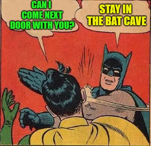 Batman Slapping Robin Meme | CAN I COME NEXT DOOR WITH YOU? STAY IN THE BAT CAVE | image tagged in memes,batman slapping robin | made w/ Imgflip meme maker